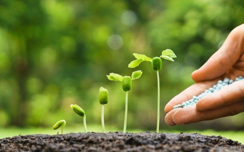 El Lead Nurturing en el Inbound Marketing: ventajas y herramientas